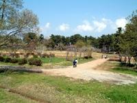 浮島デイキャンプ場・写真