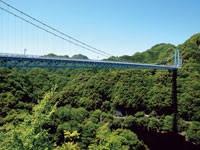 竜神大吊橋・写真