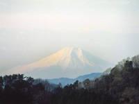 武生林道・写真