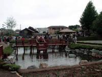 イトヨの里 泉が森公園・写真