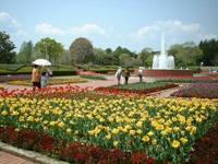 茨城県植物園・写真