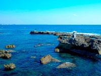 五浦海岸・写真