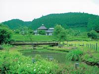 奥久慈茶の里公園・写真