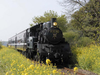 真岡鐵道の蒸気機関車・写真