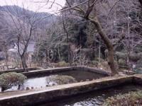 増渕魚園・写真