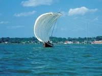 観光帆引き船・写真