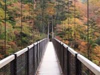 回顧の吊橋