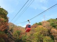 鬼怒川温泉ロープウェイ・おさるの山・写真