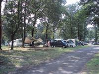 鳥野目河川公園オートキャンプ場・写真