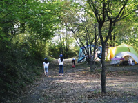 南那須オートキャンプ場・写真