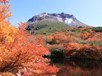 茶臼岳・写真