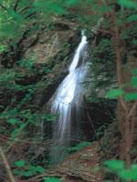 留春の滝・写真