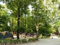 キャンプ・アンド・キャビンズ那須高原・写真