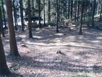 宇都宮市森林公園キャンプ場・写真