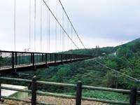 つつじ吊橋・写真