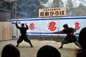 1-Day All-About-Ninja Tour in Mie