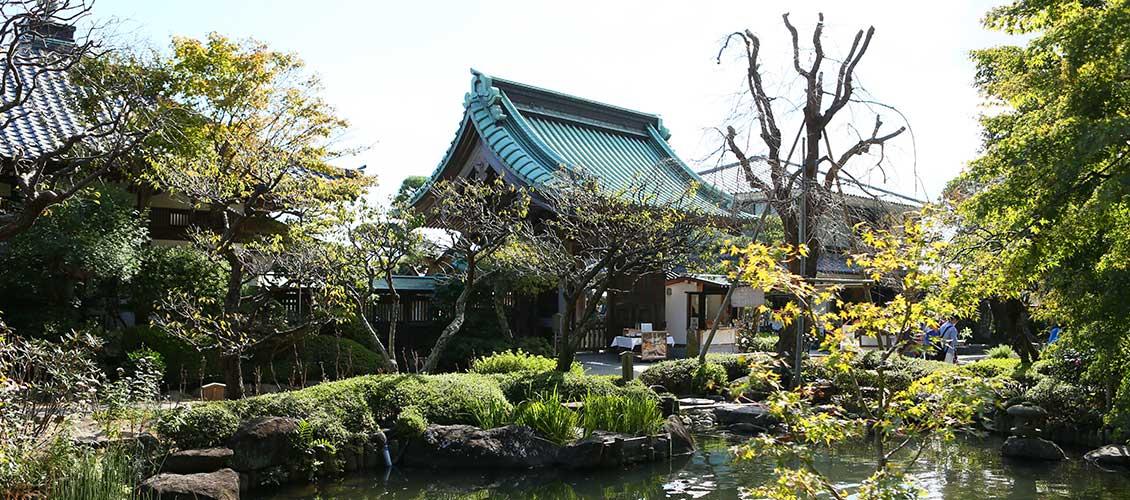 Fall in Love with Kanagawa