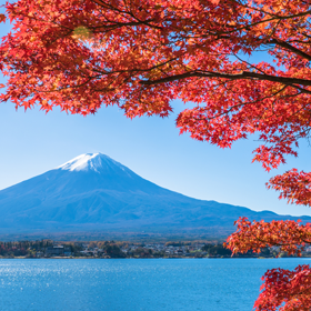 Spend the autumn travelling season at Kawaguchi-ko