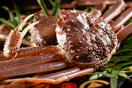 蟹料理一例