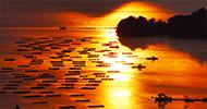 夕暮れの久美浜湾