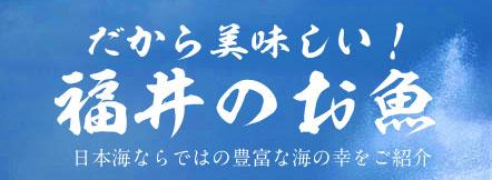 だから美味しい!福井のお魚 日本海ならではの豊富な海の幸をご紹介