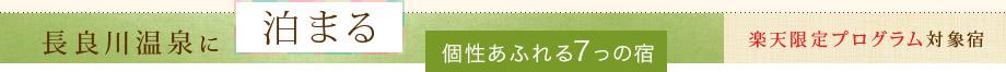 長良川温泉に泊まる楽天限定プログラム対象宿
