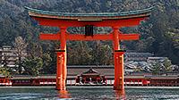 広島・宮島・岩国 周遊の旅