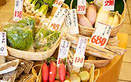 加賀野菜のスープ