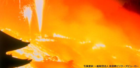 至福の奈良旅 ~冬の炎~