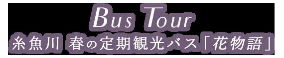 BusTour効率よく巡れる定期観光バス