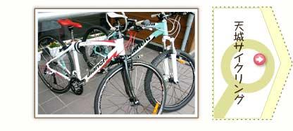 天城サイクリング