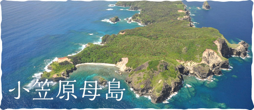 小笠原母島