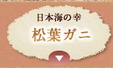日本海の幸 松葉ガニ