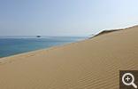 【鳥取砂丘】砂紋 自然がもたらす芸術美