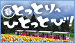 とっ酉年は鳥取へ、ひとっとび!