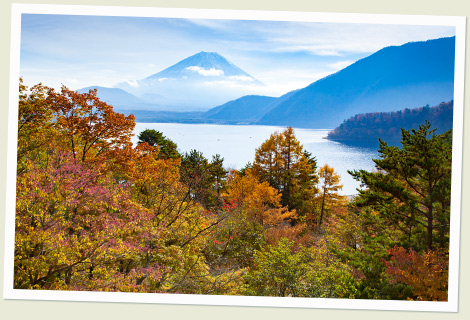 富士山周遊・本栖湖経由