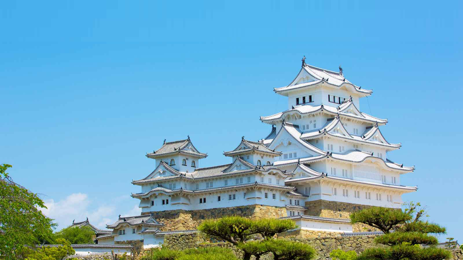 到訪過兵庫縣的旅客票選出的當地旅遊美食排行榜