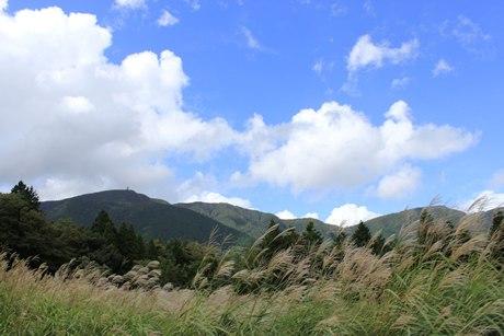 箱根仙石原溫泉