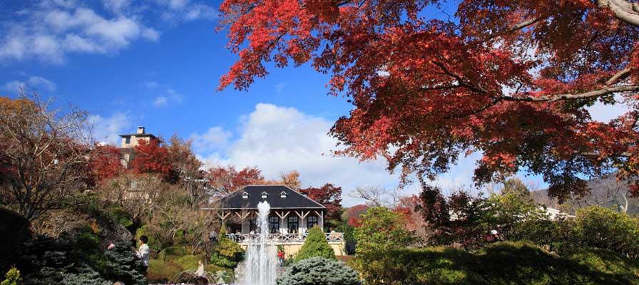 Taman Gora, Hakone