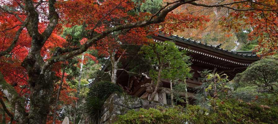 Daiyuzan Saijo-ji Temple