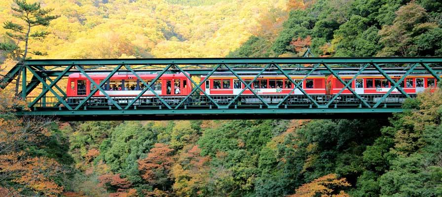 Jembatan Hayakawa (jembatan besi Deyama)