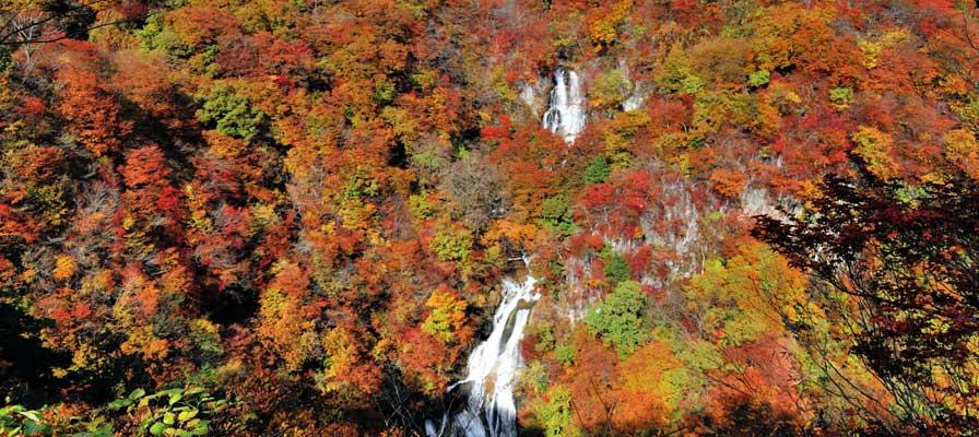 Kirifunotaki (Falling Mist Waterfall)