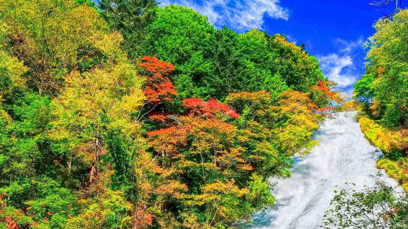 【日光】秋季紅葉觀賞推薦景點