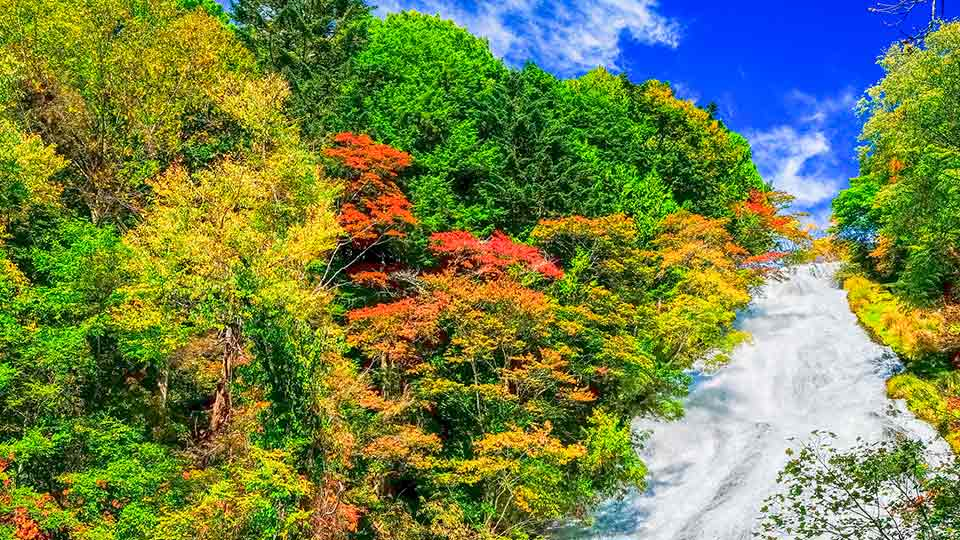 【닛코】 가을 단풍 명소 추천장소 모음