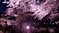 春の鬼怒川温泉満喫!