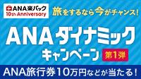 ANAダイナミックキャンペーン 第1弾!
