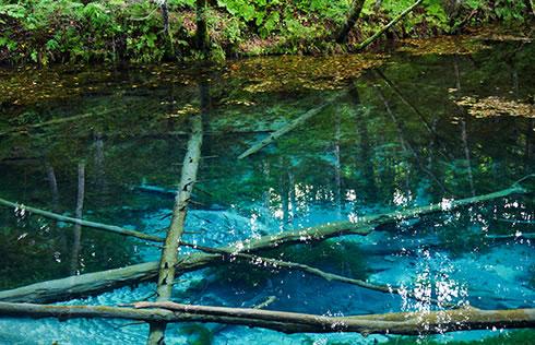 北海道神の子池