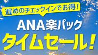 ANA楽パック\タイムセール!/開催中!
