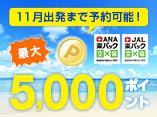 �ő�5,000�|�C���g�I