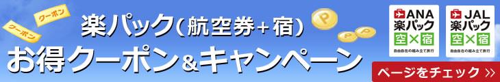 楽パック『航空券×当館』